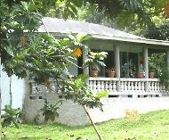 Jamaica - Familie McIntosh